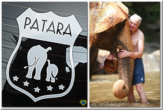 things-to-do-in-chiang-mai-patara-elephant-farm-jotan23