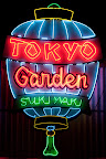 Tokyo Garden, Plate 4.jpg