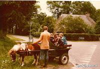 Schoolkamp 1982