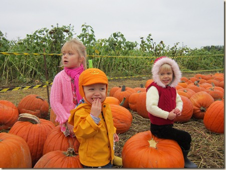 10-15 Pumpkin Patch 12