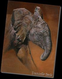 Danielle Beck. Bébé éléphant, Serengeti. Huile