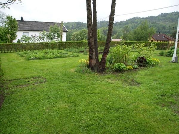 2011-05-28 Hagen på Møll (15)