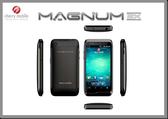 magnum 2x copy