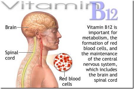Vitamin B12 Foods Vegan