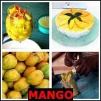 MANGO- Whats The Word Answers