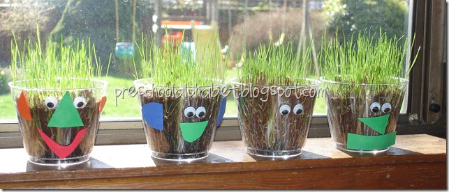 how to grow grass seed successfully