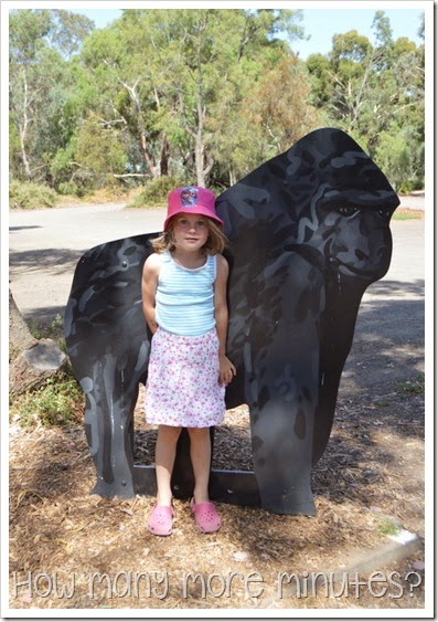 How Many More Minute? ~ Werribee Zoo