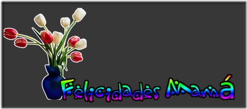 felicidades mama (12)