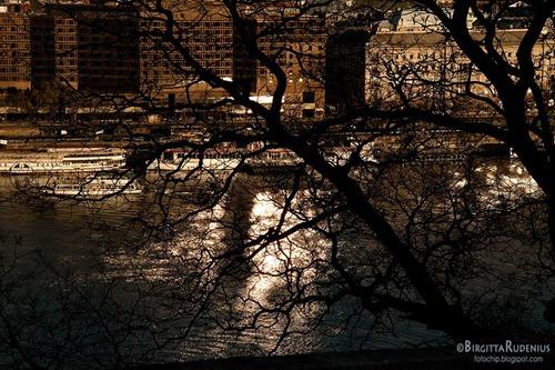 budapest_20111128_donau2