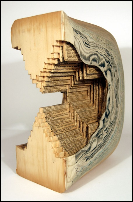 Brian Dettmer sculpteur de livres (33)