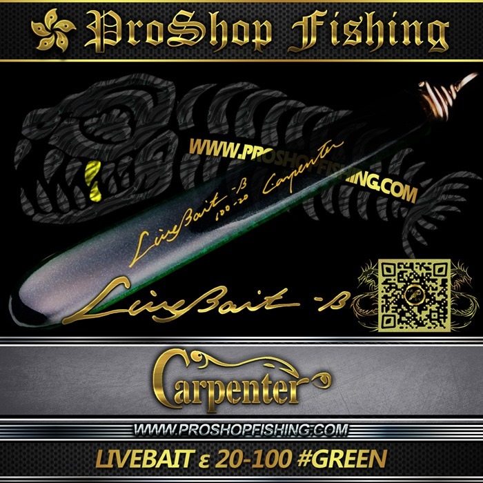 carpenter LIVEBAIT ε 20-100 #GREEN.2