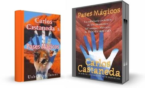 PASES MÁGICOS, Carlos Castaneda [ Video DVD + Libro ] – La Sabiduría Práctica de los Chamanes del México Antiguo: La Tensegridad