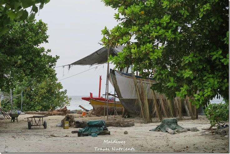馬爾地夫居民島Mahibadhoo- Amazing Guesthouse (62)