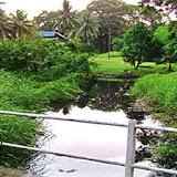 写真1: Metu Ulau川 (出典_Pejabat Residen Bintulu) / Photo1: Sungai Metu Ulau (Pejabat Residen Bintulu)
