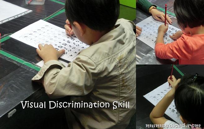 Visual Discrimination Skill