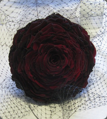 IMG_4389 black baccara theflowercolos.blogspot the flower company