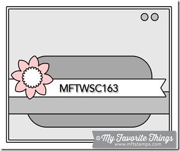 MFTWSC163