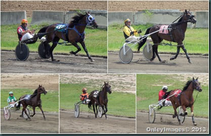 racing collage1