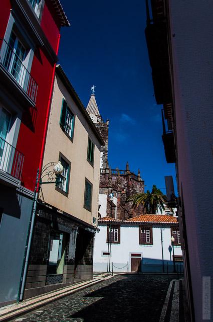 137. Февраль. Мадейра. Фуншал. Улочки города. Какое буйство красок.