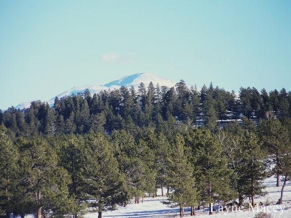 Pikes Peak 2007[1]