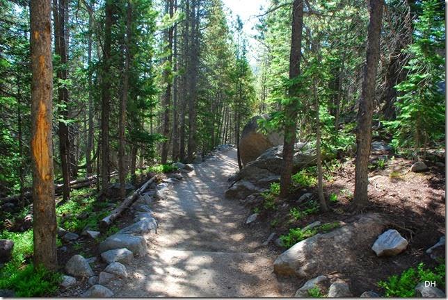 06-23-14 A RMNP Alberta Falls Loop (2)