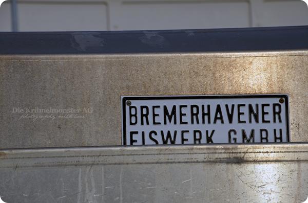 Fischereihafen Bremerhaven 261113 (26)