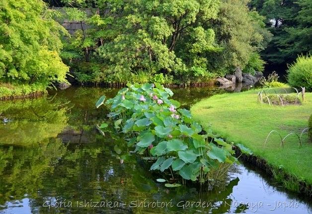 79 - Glória Ishizaka - Shirotori Garden