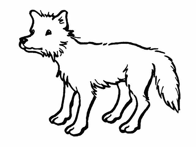 Moderno Dibujo De Corredor De Coyote Para Colorear Galería - Páginas ...