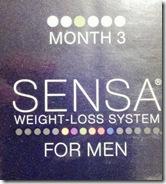 2013-03-11_18-46-31_816-sensa