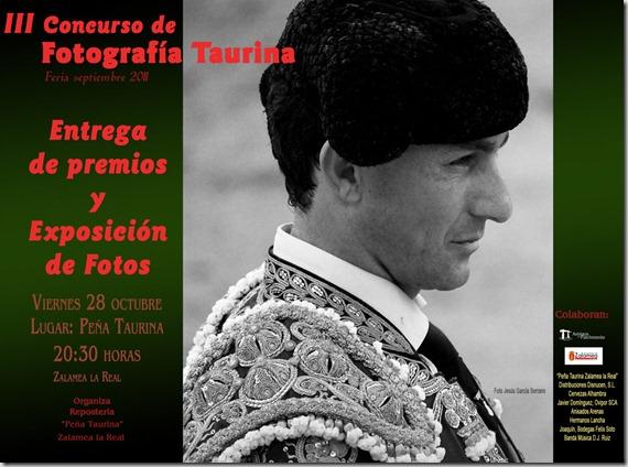 cartel-entrega-premios-2011