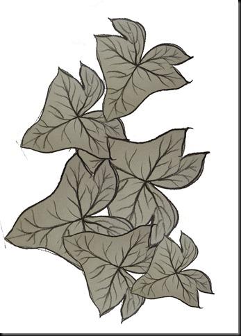Ivy leaves sketch