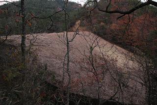 右岸より下流側の堤体を望む