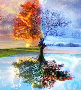 seasons-montage
