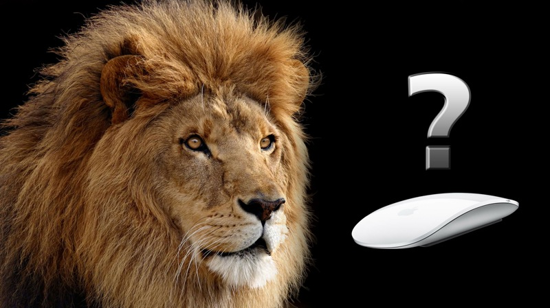 Apple Mac OS X Lion wallpaper