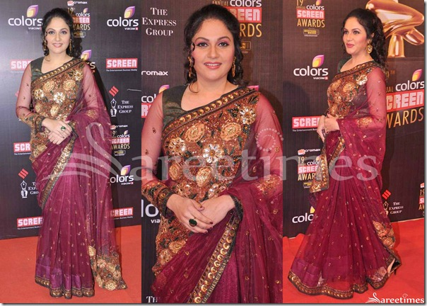 Gracy_Singh_Embroidery_Netted_Saree