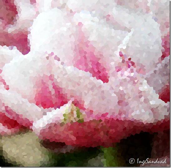 redigeret krystalisering fyldt tulipan
