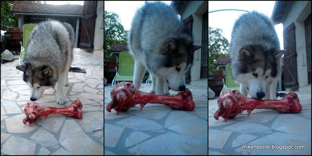 2012-09-02 Munson and big bone