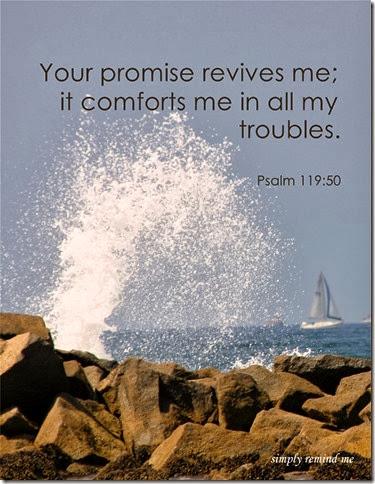 psalm11950