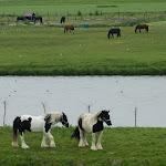 2013-Rejs do Holandii