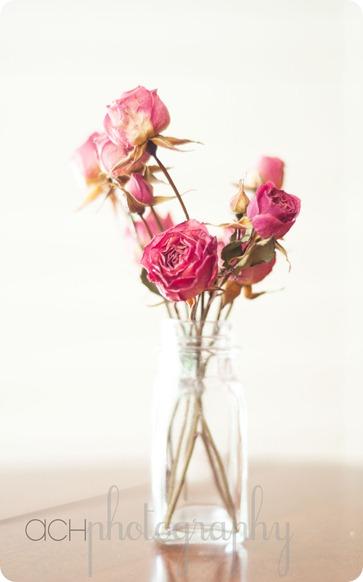 flowerss2