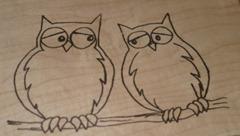 owlsinlove