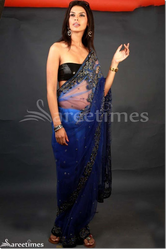 Gabriela_Blue_Embroidery_Net_Saree