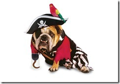 Pirate-Dog-Halloween-Costume