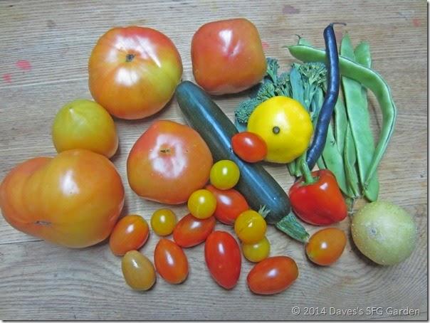 Tomatoes_etc