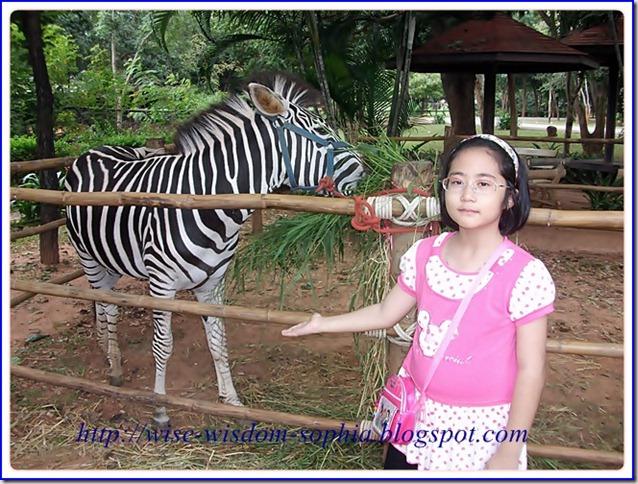โซเฟียไปเที่ยวสวนสัตว์  นครราชสีมา