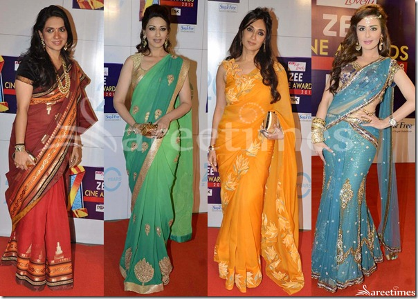 Sarees_Zee_Cine_Awards_2013(3)