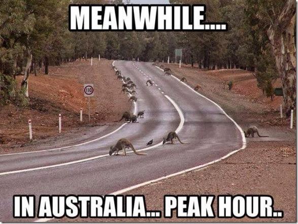 meanwhile-australia-8