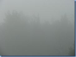 5619 Ontario - Trans-Canada Hwy 17 - fog