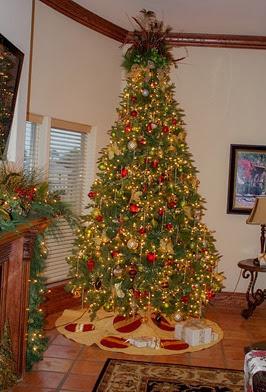 Retama Christmas tree