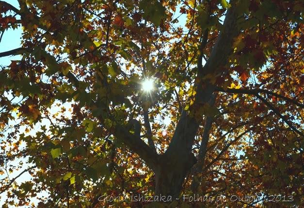Glória Ishizaka - Outono 2013 - 7